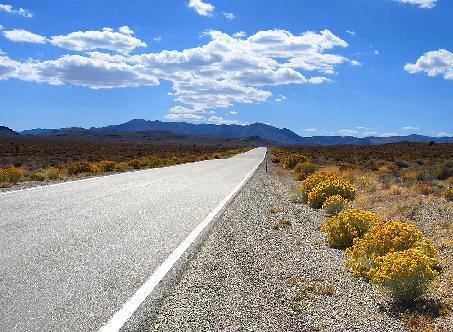 Twitter Road